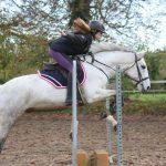Travailler en confiance avec son poney ou son cheval est essentiel