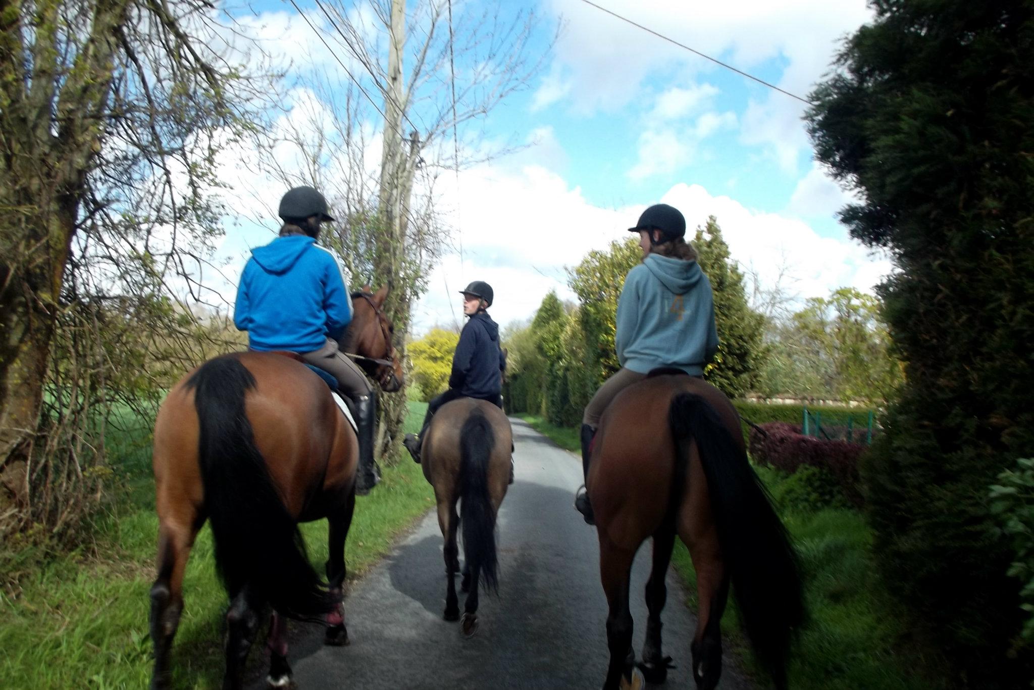 Autour de l'écurie du Val Loyer, de beaux chemins de promenades sont offerts aux cavaliers.
